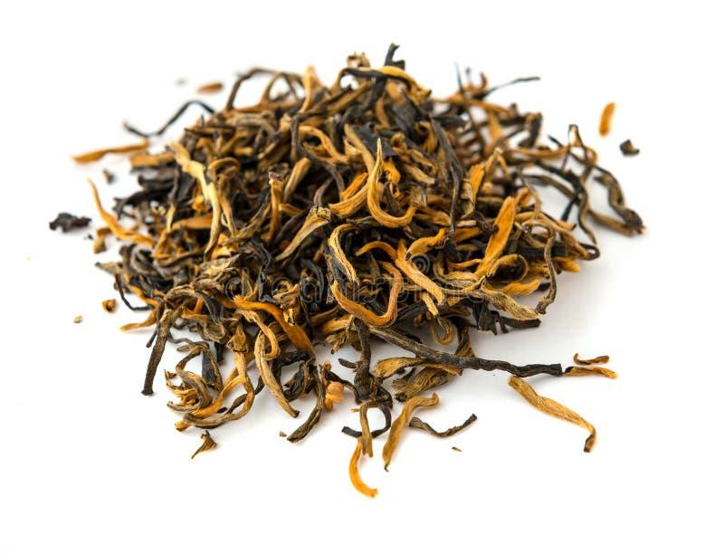 Chá preto indiano do ouro de ASSAM isolado em um branco fotos de stock royalty free