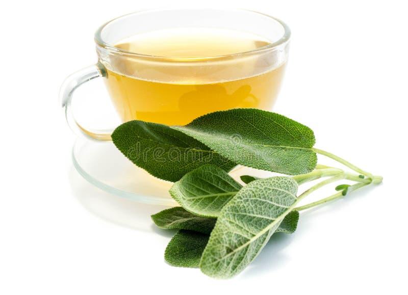 Chá prudente em uma xícara de chá isolada no fundo branco imagem de stock royalty free