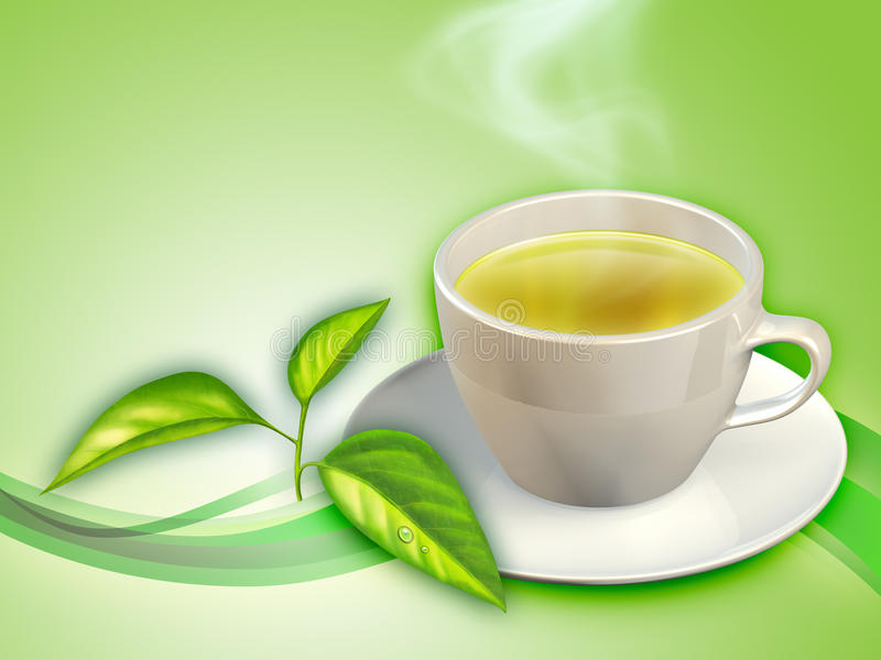 Chá verde ilustração do vetor