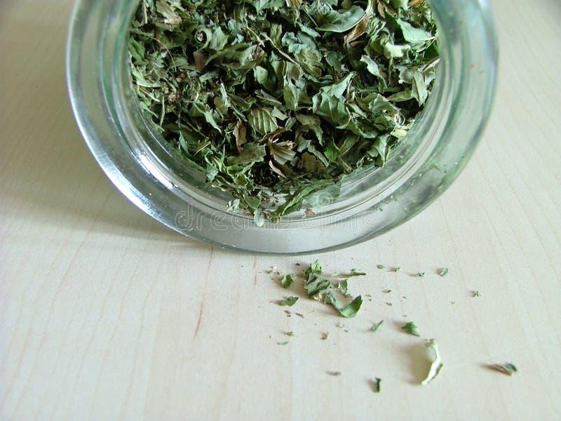 Chá verde em um frasco imagem de stock royalty free
