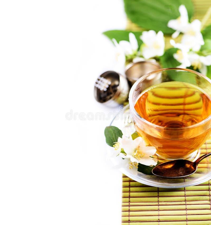 Chá verde erval com a flor do jasmim na beira transparente da xícara de chá isolada no fundo branco com cpyspace fotos de stock