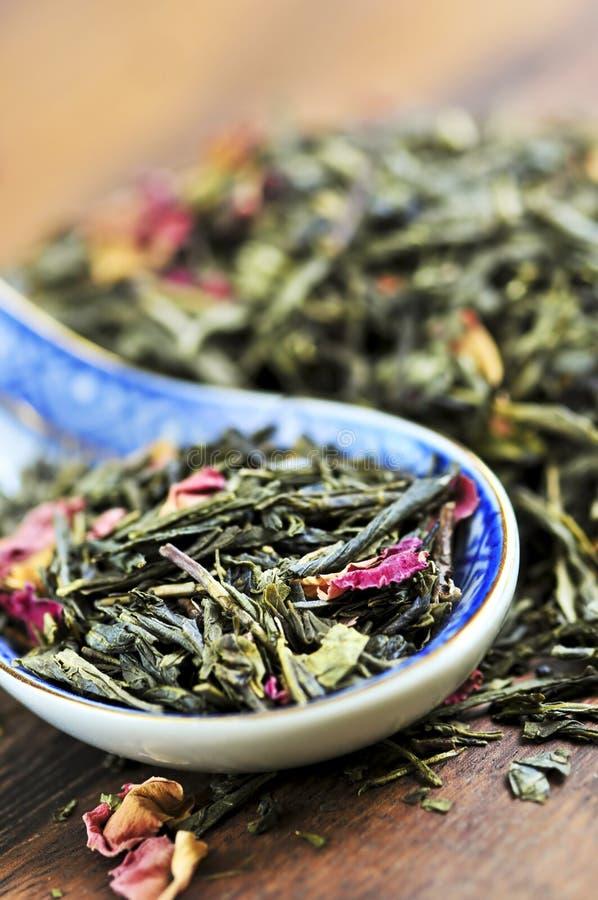 Chá verde frouxo fotos de stock royalty free