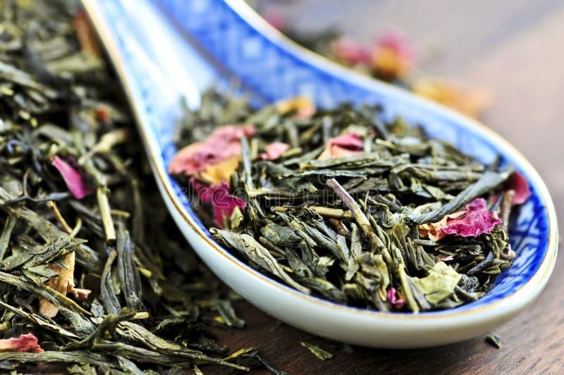 Chá verde frouxo fotografia de stock royalty free