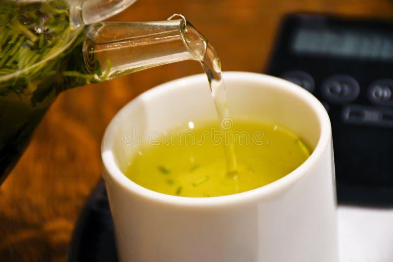 Chá verde orgânico recentemente fabricado cerveja fotos de stock royalty free