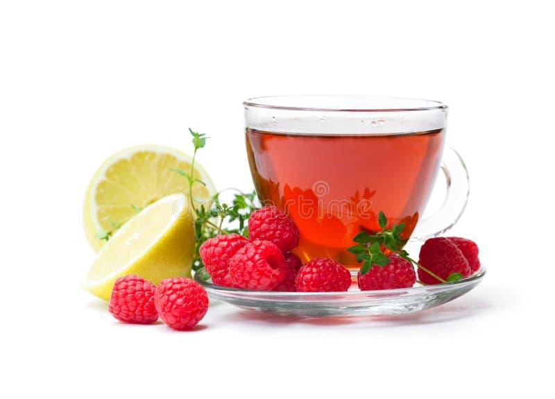 Chá vermelho do fruto com o limão e a framboesa isolados no backgr branco foto de stock