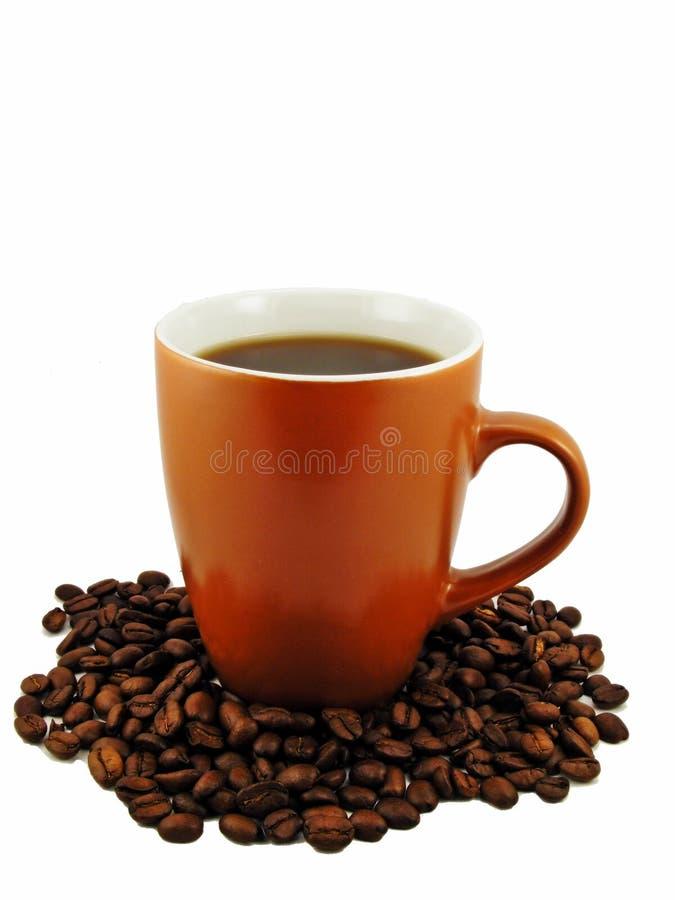 Download Chávena De Café & Feijões Imagem de Stock - Imagem de branco, bebida: 16852579