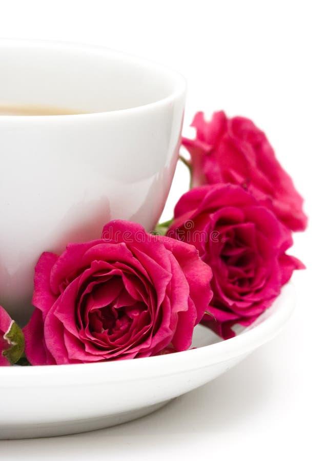 Chávena de café com rosas vermelhas imagens de stock