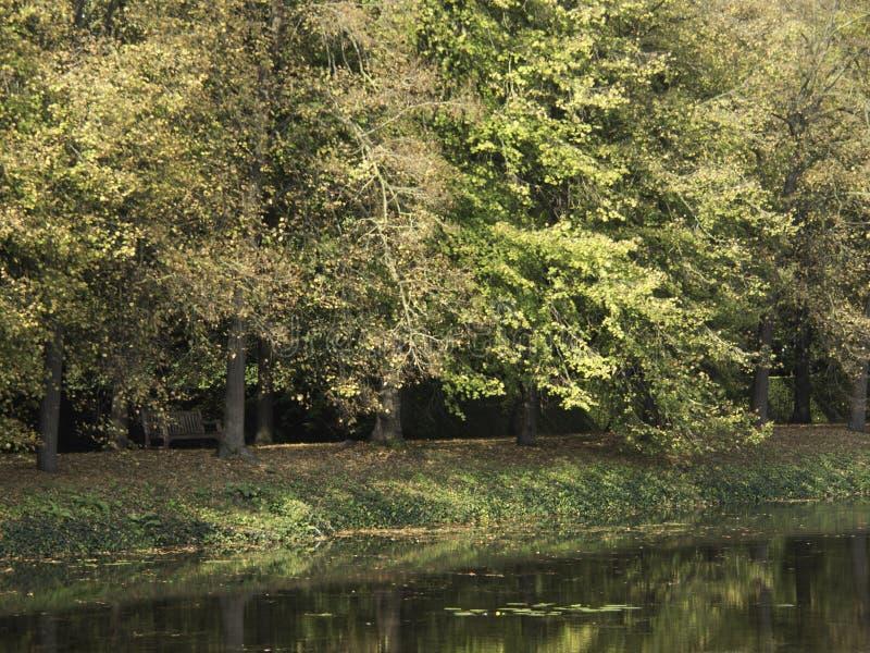Download Château Anholt photo stock. Image du tour, arbres, ciel - 45359278