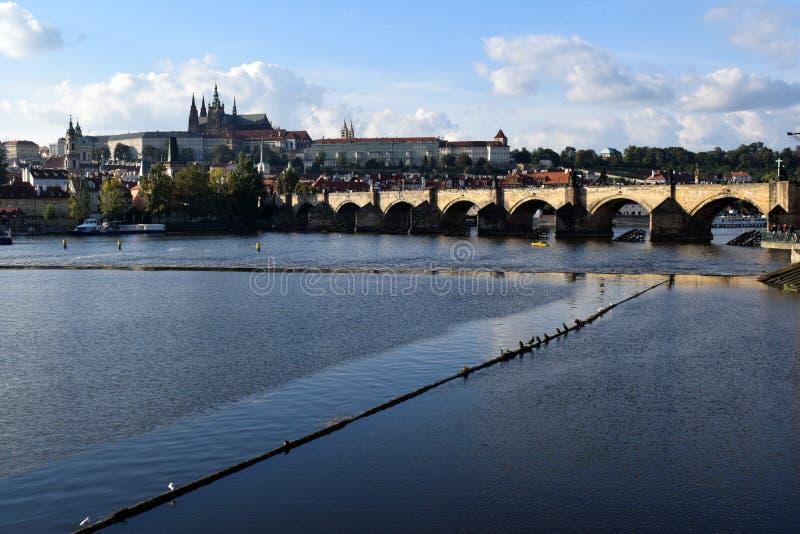 château Charles Prague de passerelle images libres de droits