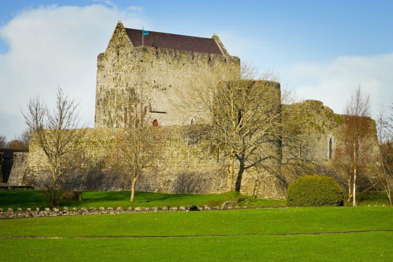 Château d'Athenry à l'automne photo libre de droits
