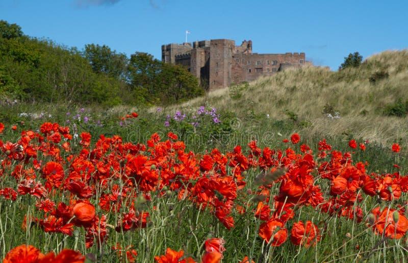 Château de Bamburgh image libre de droits