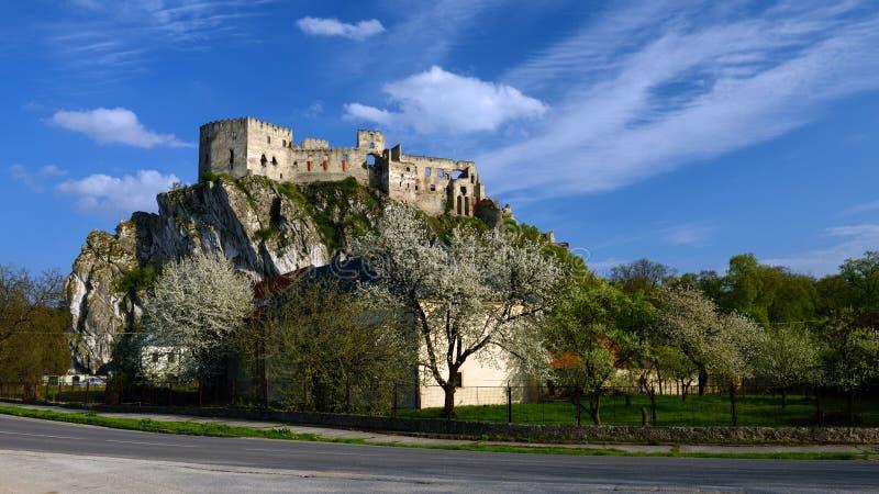 Château de Beckov, Slovaquie image stock