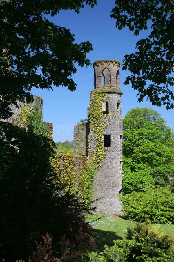 Château de cajolerie image libre de droits