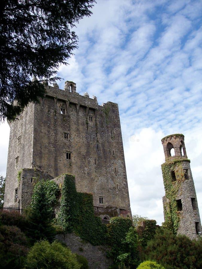 Château de cajolerie dans le liège du comté photo stock