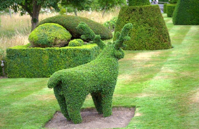 Château de Hever de jardin formé par animal photo libre de droits