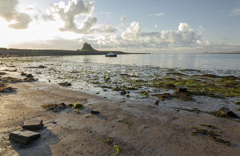 Château de Lindisfarne, île sainte, le Northumberland l'angleterre LE R-U images stock
