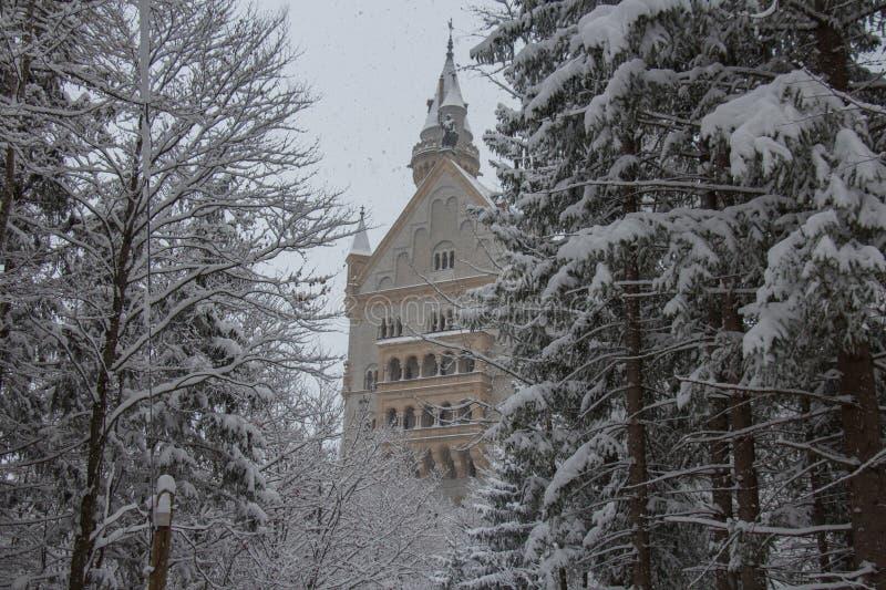 Château de Neuschwanstein dans l'horaire d'hiver entre les arbres Fussen l'allemagne image libre de droits