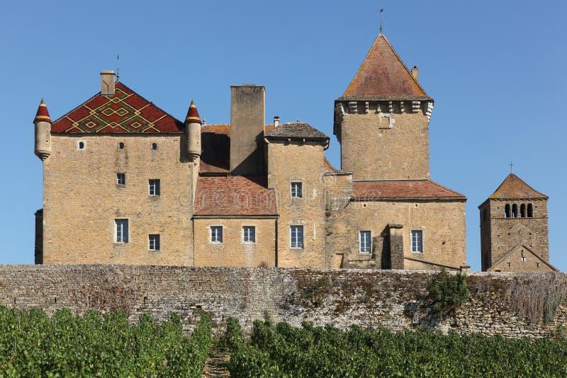 Château de Pierreclos en Bourgogne photo libre de droits