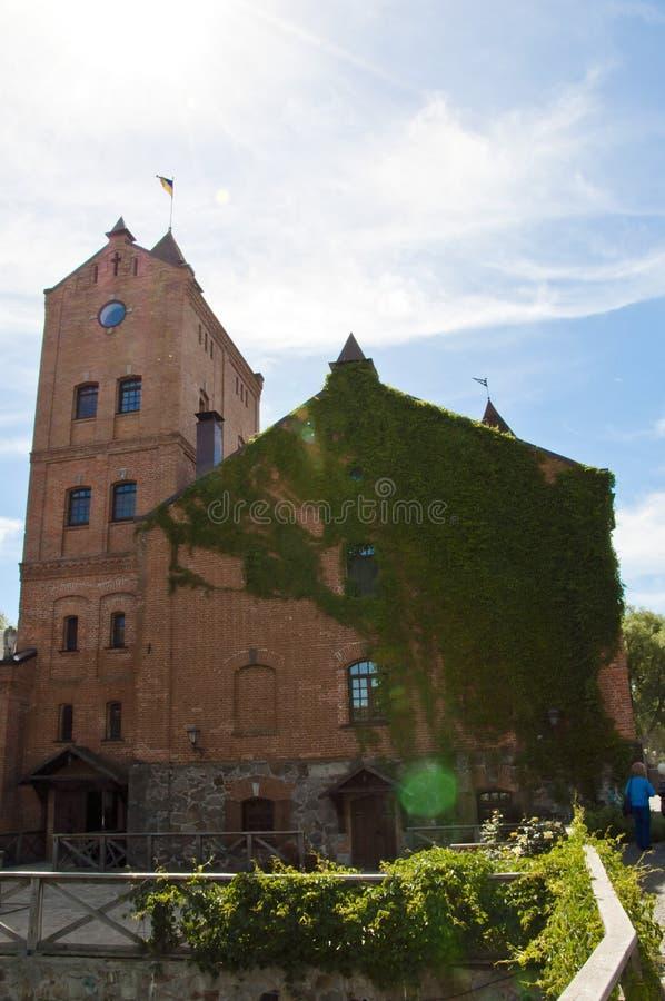 Château de Radomyshl à la vigne verte de liane grimpant sur le mur de construction. architecture de la ville ukrainienne de Zhit photo libre de droits