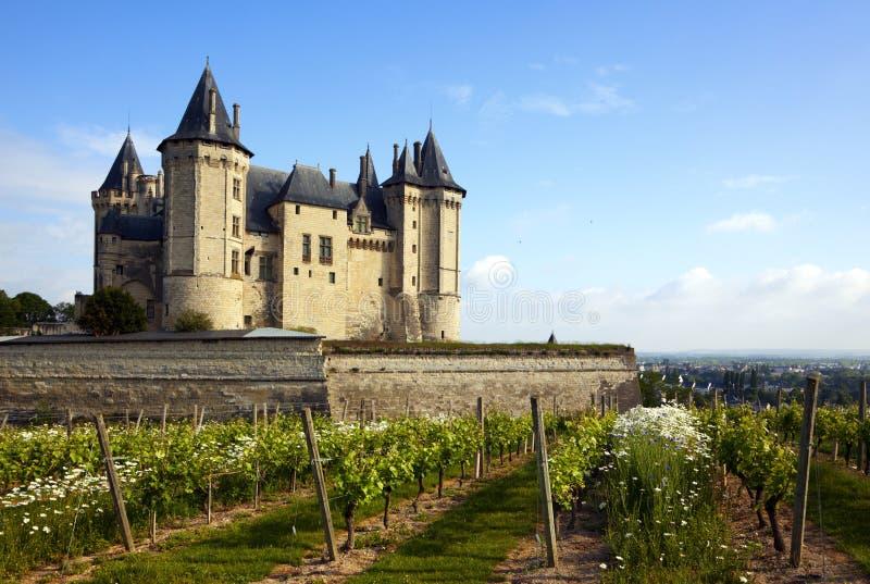 Château DE Saumur met wijngaarden in voorgrond royalty-vrije stock fotografie