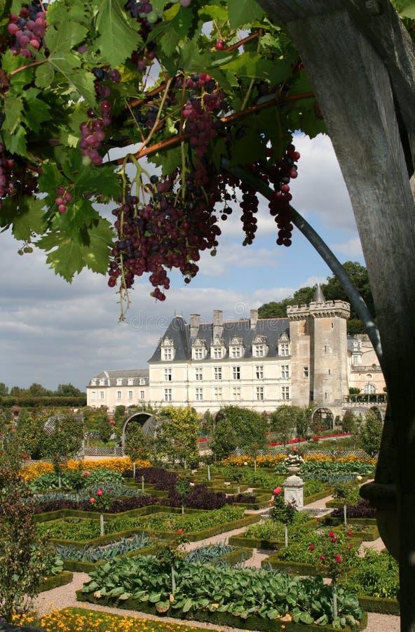 Château de Villandry, France photographie stock libre de droits