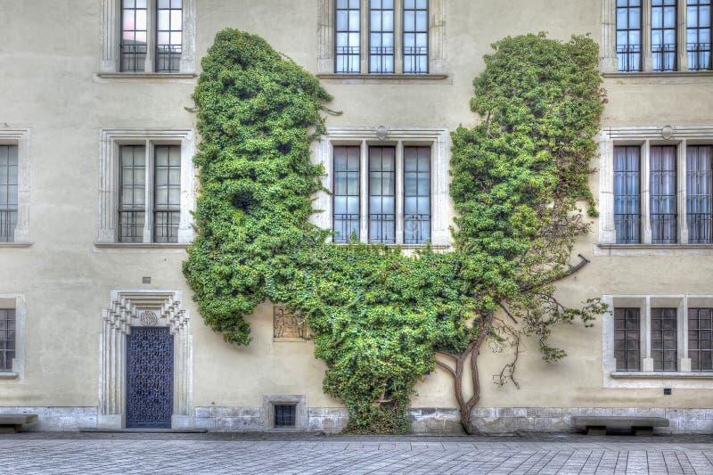 Château de Wawel photo libre de droits