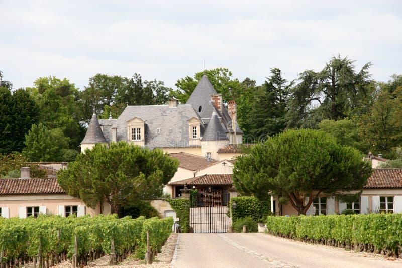 Château français de vigne photo stock