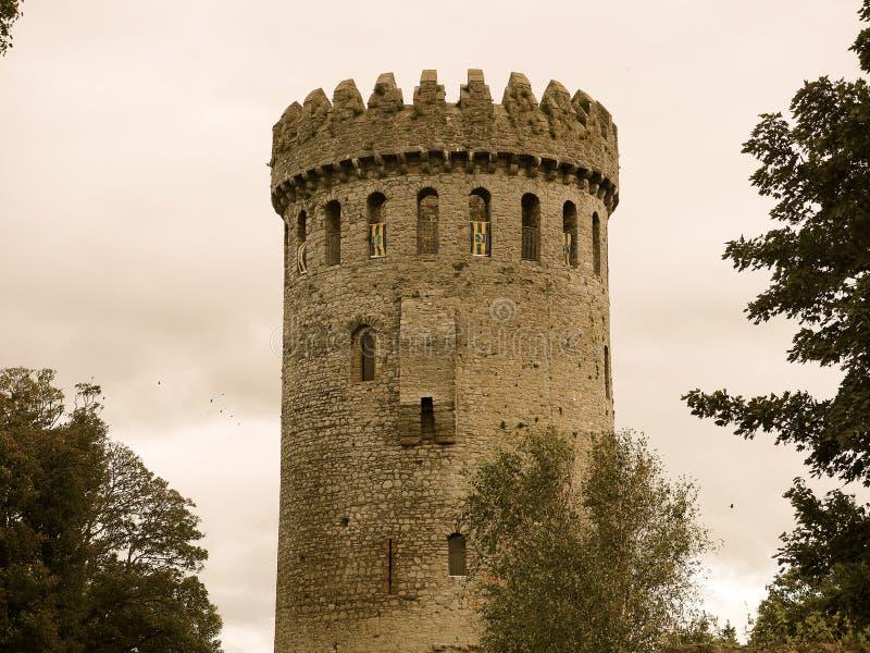 Château Irlande de Nenagh photographie stock