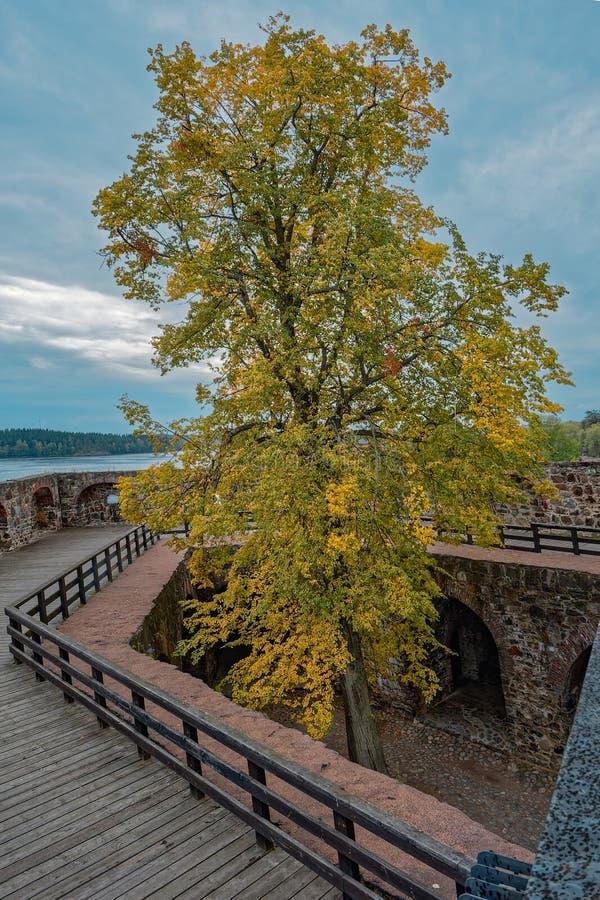 Château médiéval à l'automne photo libre de droits