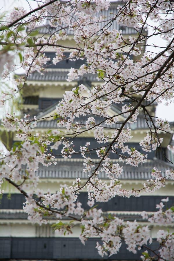 Château Matsumoto-jo de Matsumoto, châteaux historiques premiers japonais dans Honshu easthern, Matsumoto-shi, région de Chubu, N image libre de droits