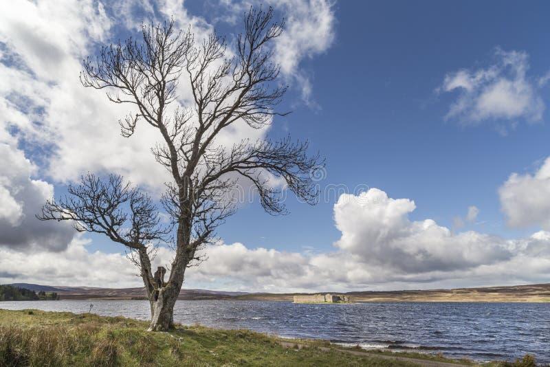 Château sur Lochindorb sur Dava Moor en Ecosse photos libres de droits