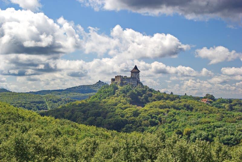 Châteaux médiévaux entourés par les forêts vertes images libres de droits