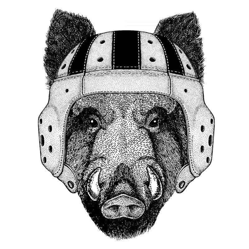 Chłodno zwierzęcy jest ubranym rugby hełma Krańcowy sport gemowy Aper, knur, wieprz, dzikiego knura ręka rysujący wizerunek dla k ilustracja wektor