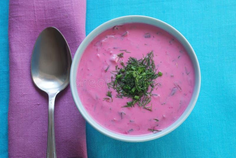 ChÅodnik - soupe à la betterave froide dans une cuvette photos libres de droits