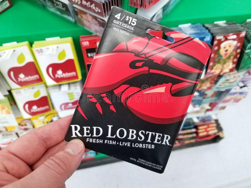 Chèque-cadeau rouge de homards dans une main photos libres de droits
