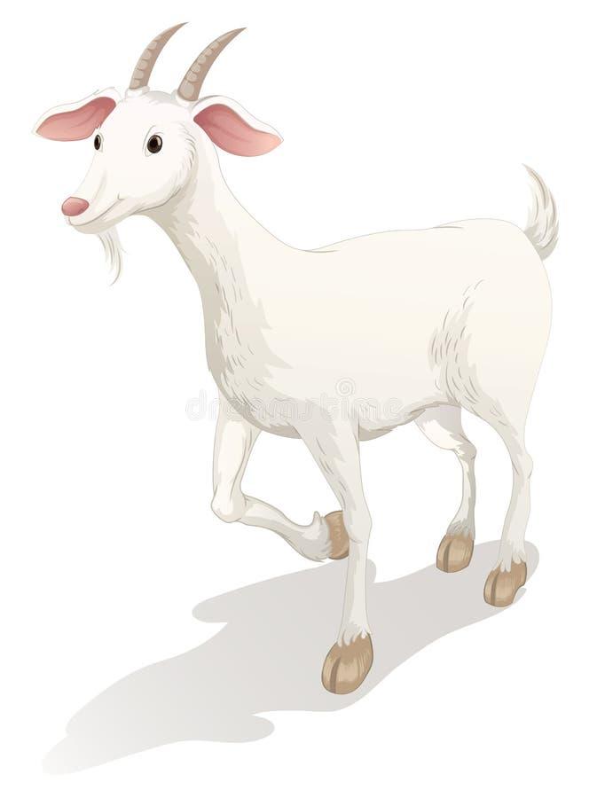 Chèvre illustration de vecteur