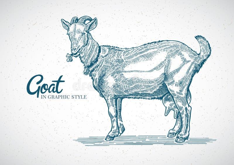 Chèvre dans le style graphique illustration libre de droits