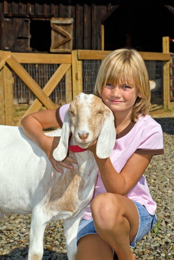 Chèvre de fille et d'animal familier photographie stock