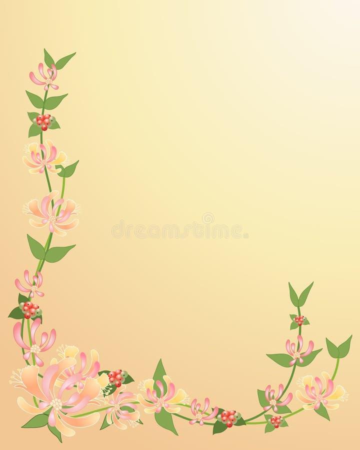 Chèvrefeuille illustration stock