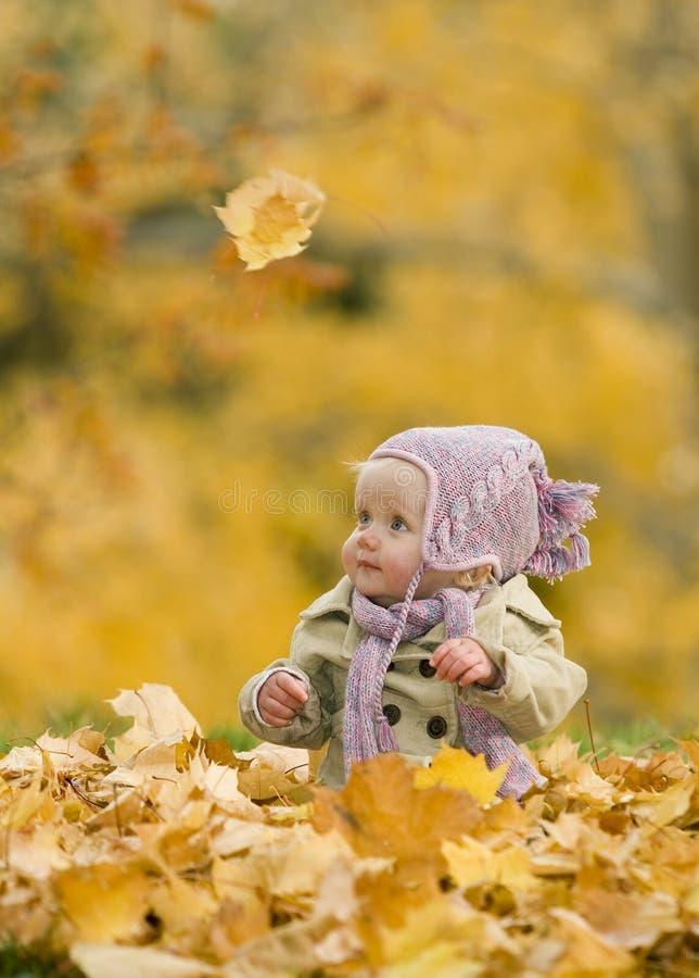Chéri dans des lames d'automne photos stock