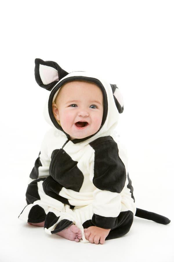 Chéri dans le costume de vache photo libre de droits