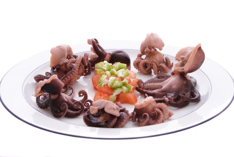 Chéri Octopuss images stock