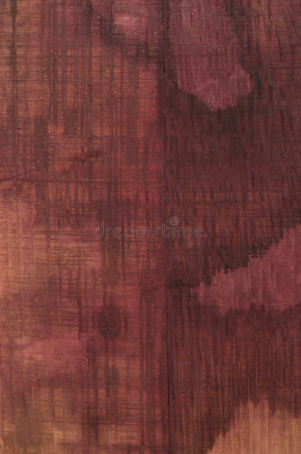 Chêne souillé par vin photos stock