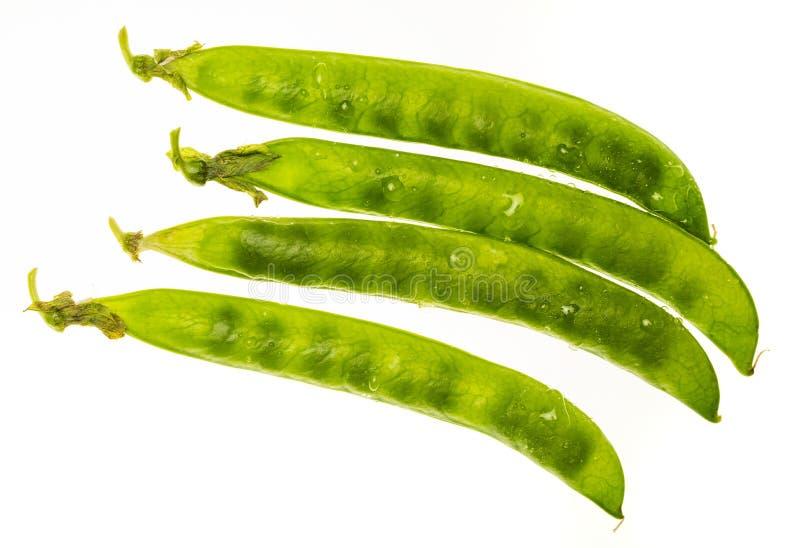 Chícharos de los guisantes verdes, petipuas, blandos y muy frescos con descensos del agua fotos de archivo libres de regalías