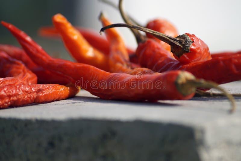 chłodna czerwień zdjęcia stock