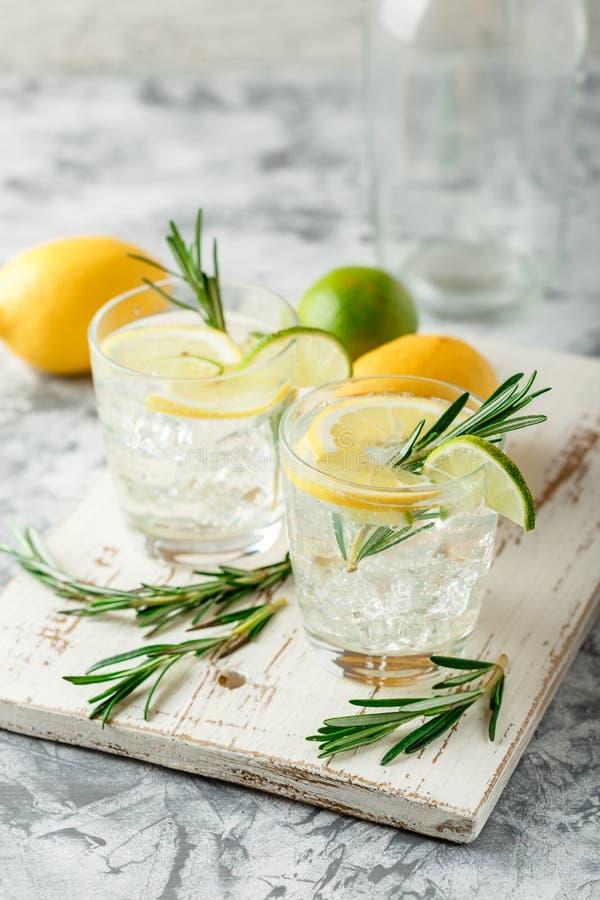 Chłodnicza alkoholiczka lub bezalkoholowy koktajl z cytryną zdjęcie royalty free