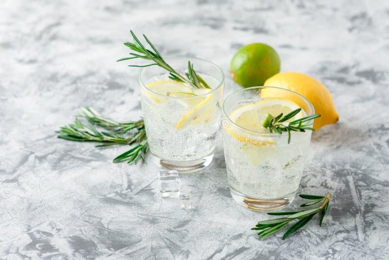 Chłodnicza alkoholiczka lub bezalkoholowy koktajl z cytryną obraz stock