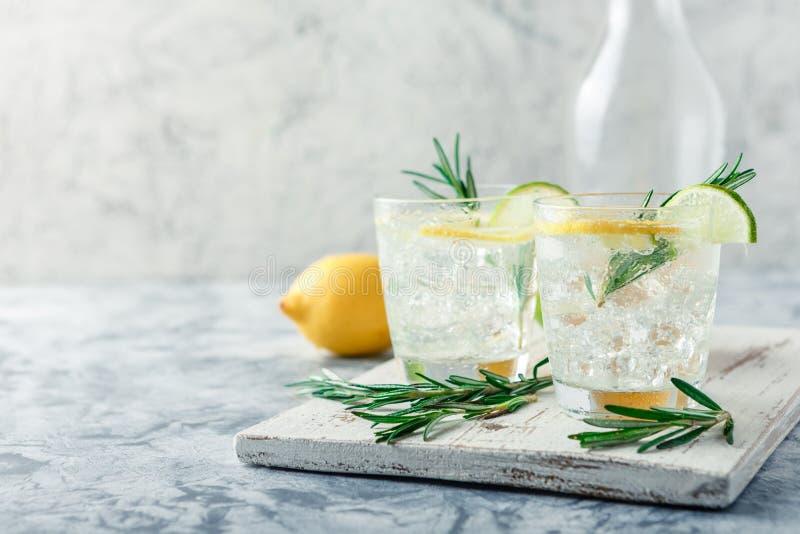 Chłodnicza alkoholiczka lub bezalkoholowy koktajl z cytryną obrazy stock