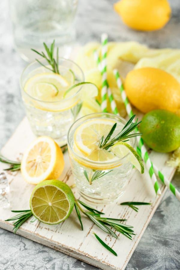 Chłodnicza alkoholiczka lub bezalkoholowy koktajl z cytryną obraz royalty free