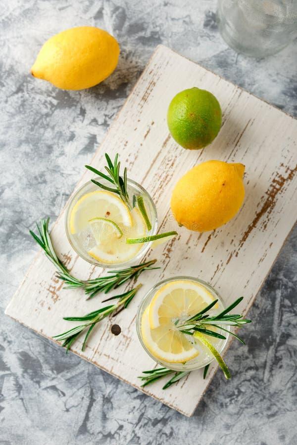 Chłodnicza alkoholiczka lub bezalkoholowy koktajl z cytryną zdjęcie stock